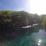 paddle boarding through the cenote