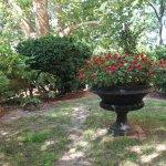 Vistas In the Garden