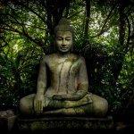 Buddha at the Silver Pagoda, Phnom Penh