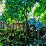 Ruins, Angkor