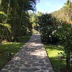 Photo de Hotel Rio Perlas Spa & Resort