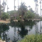 Photo of Paradise Point Resort & Spa