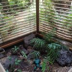 Indoor garden (cute!)