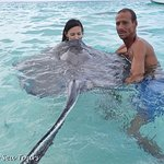 Kiss a Sting Ray 7 years good luck. (With the STING RAY whisper himself) amazing experience