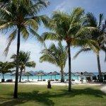 酒店種很多椰子樹