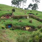 Shire homes!