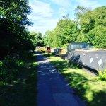 The Rochdale Canal near Callis Wood