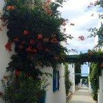 Photo of Galeana Beach Hotel