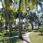 Foto de Plantation Island Resort