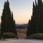 Foto de Relais Villa Grazianella - Fattoria del Cerro