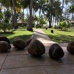 Photo de Plantation Island Resort