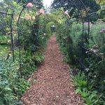The Rose walkway