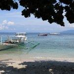 Foto Blue Ribbon Dive Resort