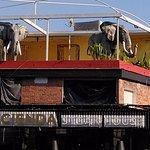 Curiosidad, bar en Guadalajara