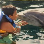 Photo of Dolphin Discovery Puerto Aventuras