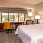 NEWLY Renovated Sheraton BWI Ariport: King Guestroom
