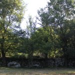 Photo de Camp Full Monte