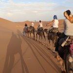 Camel time!