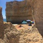 Photo of Algarve Seafaris