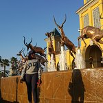 Photo de City Sightseeing Joburg