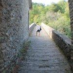 Photo of Agriturismo Le Dogane