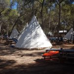 Photo of Camping Es Cana