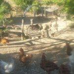Photo de Agriturismo Ca du Chittu