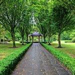 A wonderful park.