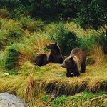 Photo de Kodiak Legends Lodge