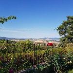 """Ausblick in die Toskana im sehr gepflegten Gartenbereich des Appartement """"Queria"""""""