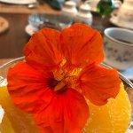 صورة فوتوغرافية لـ Cobble House Bed & Breakfast