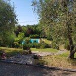 """Ansicht in den Gartenbereich mit Pool vom Appartement """"Gorbezzolo"""""""