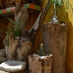 Tree stump containers