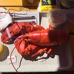 Lobster basket and whole belly clams.  My hubby said the clams were some of the best he's had an
