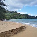Along Hanalei Bay facing Hanalei Beach