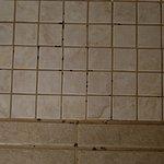 Mildew on the bathroom floor at shower entrance