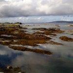 Foto de Saltstraumen