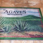 In case you wondered what an agave was