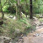 Foto van Pai Hot Springs
