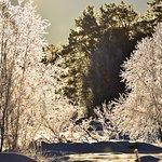 Photo of Luvattumaa - Levi Ice Gallery