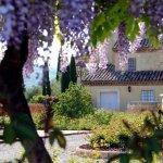 Photo of Villa La Cerbara