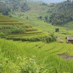 Photo of Topas Ecolodge