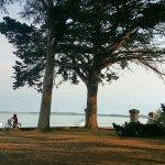 Fotor_150376495809889_large.jpg
