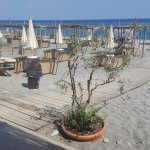Lido Bounty Beach