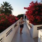 Alex Beach Hotel Foto