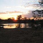 Motswari Private Game Reserve Foto