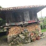 Photo of Bajo los Tilos