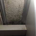 Mold / Mildew on our walls.