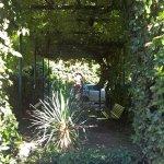 Закрытый сад отеля