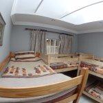 Zebra Dormitory